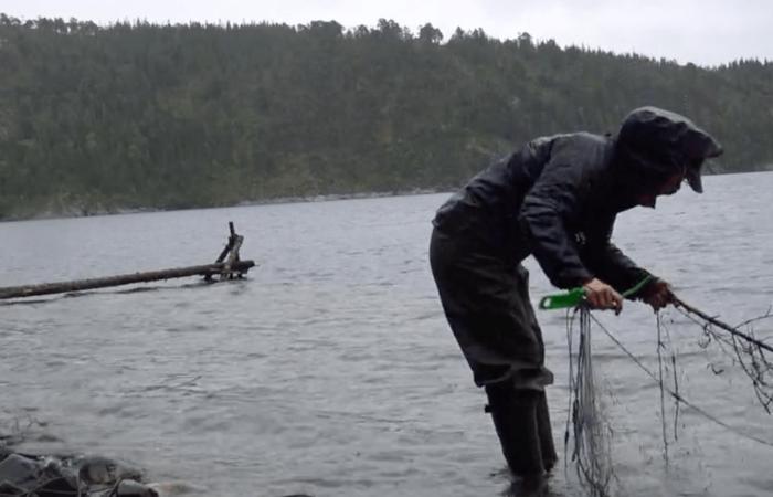 Fiskeri i regnvejr