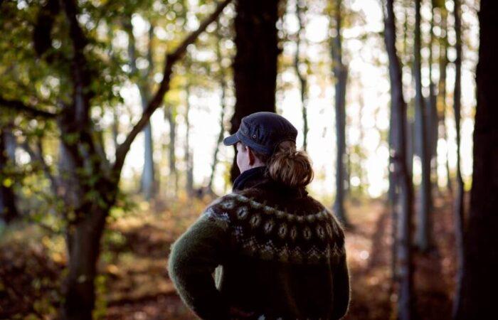Kongsøre skov