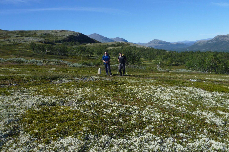 Fjeldkursusus i Norge