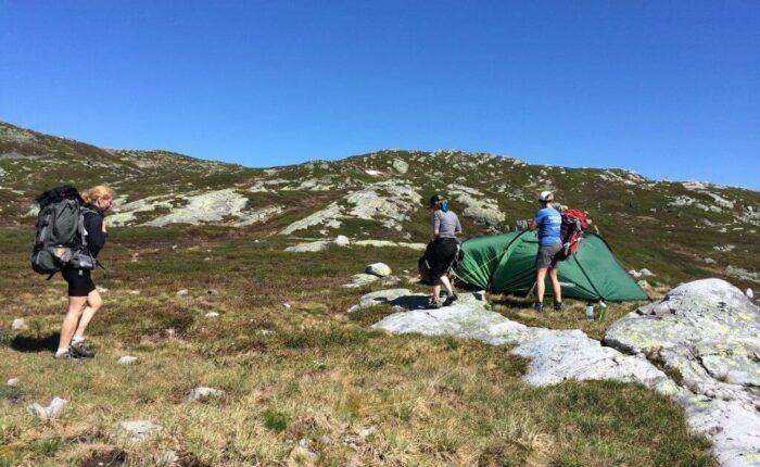 Etablering Lifjell