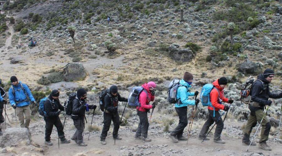 Kilimanjaro-gruppevandring